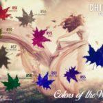 "Nowa jesienna paletka od ChiodoPRO ""Colors of the Wind"""